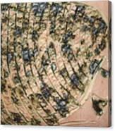 Tresses - Tile Canvas Print