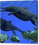 Triassic Shonisaurus Marine Reptile Canvas Print