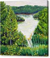 Tributary Salt Fork Lake Ohio Canvas Print
