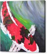 Tricolored Koi Canvas Print