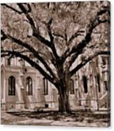 Trinity Episcopal Cathedral Court Yard Canvas Print