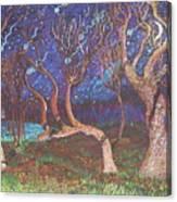 Trinity Tree By Moonlight Canvas Print