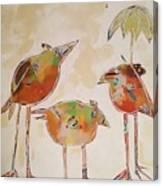Trio Birds Canvas Print