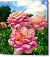 Trio Of Rose Canvas Print