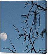 Trompe L Oeil Moon Canvas Print