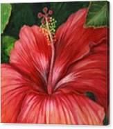Tropic Fire Canvas Print