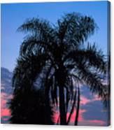 Tropic Sunset In Floirida Canvas Print
