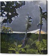 Tropic Wind Canvas Print