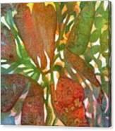Tropical #2 Canvas Print
