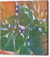 Tropical #6 Canvas Print