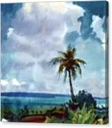 Tropical Afternoon Canvas Print