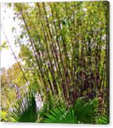 Tropical Bamboo Canvas Print