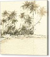 Tropical Beach Drawing Canvas Print