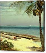 Tropical Coast Canvas Print