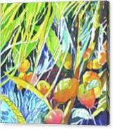 Tropical Design 1 Canvas Print