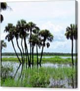 Tropical Flooding Canvas Print