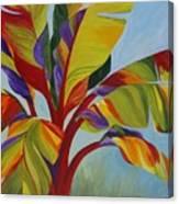 Tropical Mist Canvas Print