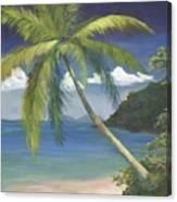 Tropical Palm Canvas Print