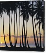 Tropical Palm Sunset Canvas Print