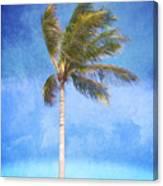 Tropical Palm Tree Canvas Print