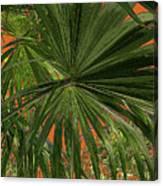 Tropical Palms 1 Canvas Print