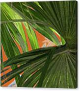 Tropical Palms 2 Canvas Print