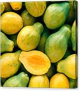 Tropical Papayas Canvas Print
