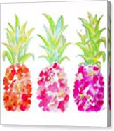 Tropical Pink And Gold Canvas Print