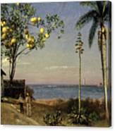 Tropical Scene Canvas Print
