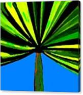 Tropical Tree Canvas Print