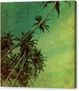 Tropical Vestige Canvas Print