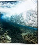 Tropical Wave Curl Canvas Print