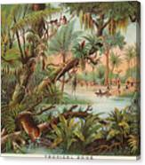 Eurographics 1751-21424 Tropical Scenery I Stretched Canvas 24x36