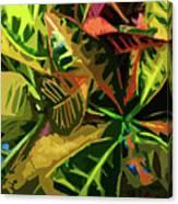 Tropicale Canvas Print