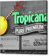 Tropicana Field Canvas Print