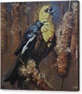 Troubadour Canvas Print