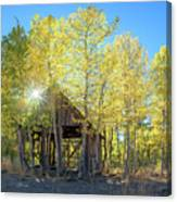 Truckee Shack Near Sunset During Early Autumn With Yellow And Green Leaves On The Trees Canvas Print