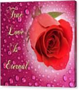 True Love Is Eternal Canvas Print