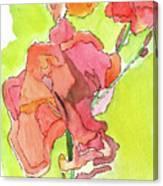 Trumpet Vine Blossom Canvas Print
