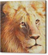Trust Betrayed Canvas Print