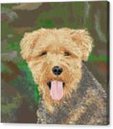 Tucker The Welsh Terror Canvas Print