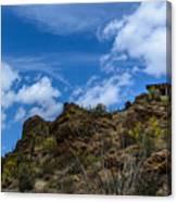 Tucson Mountains Canvas Print