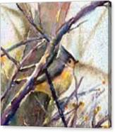 Tuffed Titmouse 2 Canvas Print