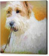 Tuffy The Russell Terrier Canvas Print