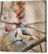 Tufted Titmouse 2 Canvas Print