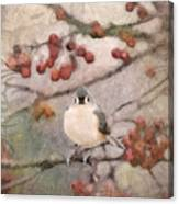 Tufted Titmouse Canvas Print