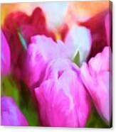 Tulip 58 Canvas Print