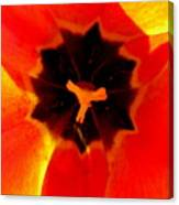 Tulip Art Canvas Print