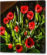 Tulip Beauties Canvas Print