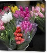 Tulip Bouquets Canvas Print